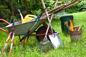 Planning Your Summer Projects