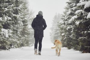 Fun Winter Activities: Making The Most Of Your Time At Home